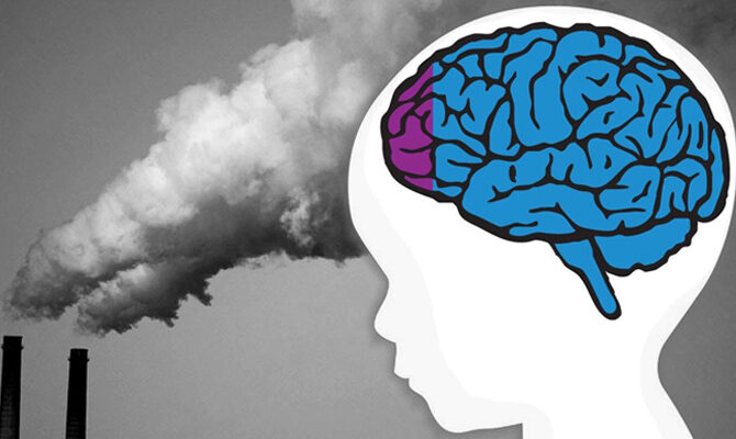 Pierluigi Scerbo- Il sospettato numero uno: l'inquinamento